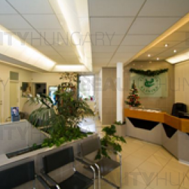 hair transplant clinic Budapest